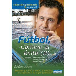 Fútbol. Camino al éxito II